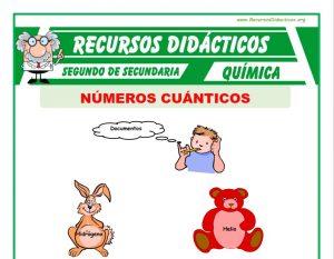Ficha de Números Cuánticos para Segundo de Secundaria