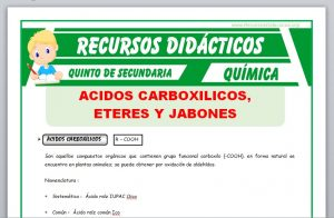 Ficha de Ácidos Carboxílicos y Ésteres para Quinto de Secundaria