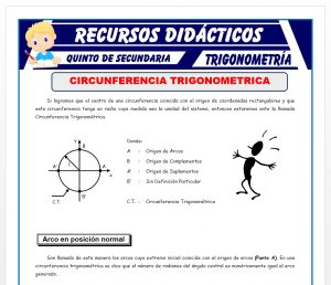 Ficha de Ejercicios de Circunferencia Trigonométrica para Quinto de Secundaria