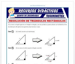 Ficha de Ejercicios de Resolución de Triángulos Rectángulos para Quinto de Secundaria
