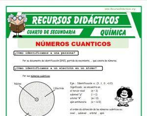Ficha de Los Números Cuánticos para Cuarto de Secundaria