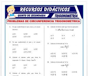 Ficha de Problemas de Circunferencia Trigonométrica para Quinto de Secundaria