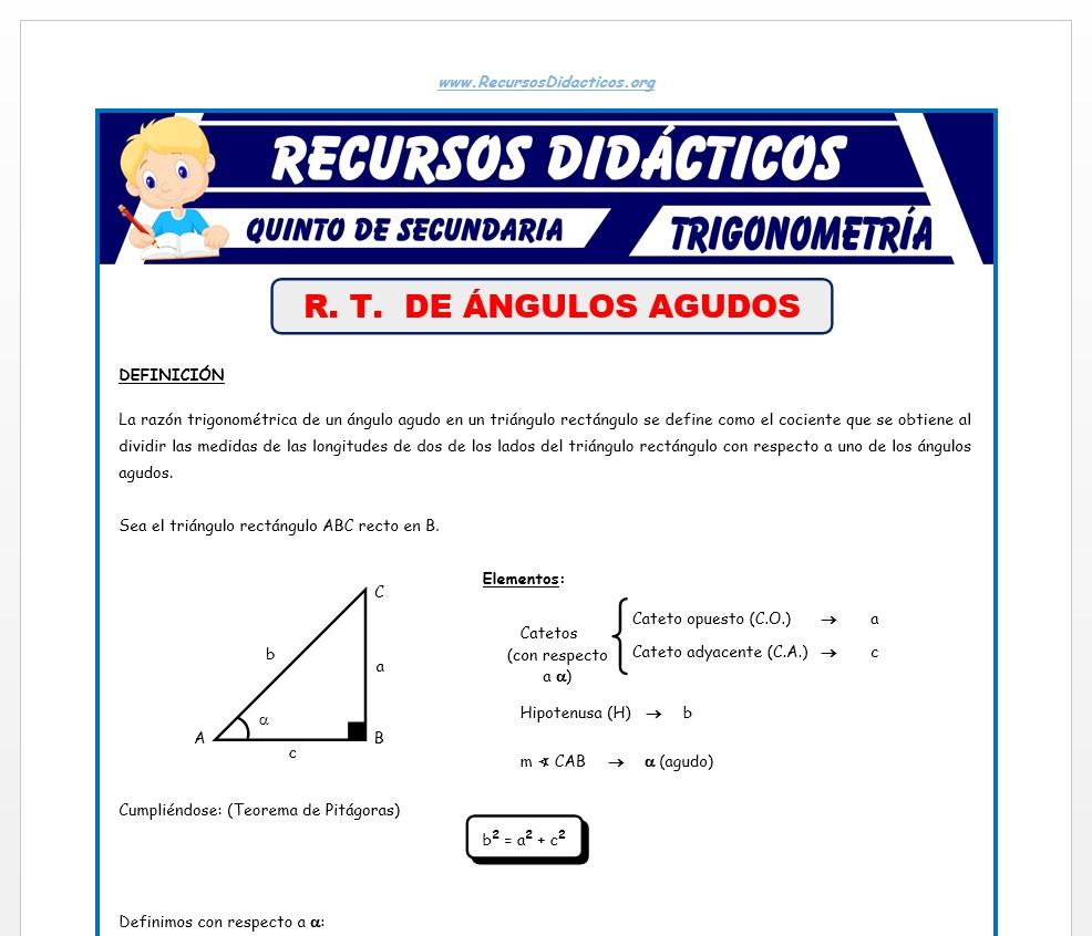 Ficha de Razones Trigonométricas de Ángulos Agudos para Quinto de Secundaria