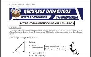 Ficha de Razones Trigonométricas para Cuarto de Secundaria