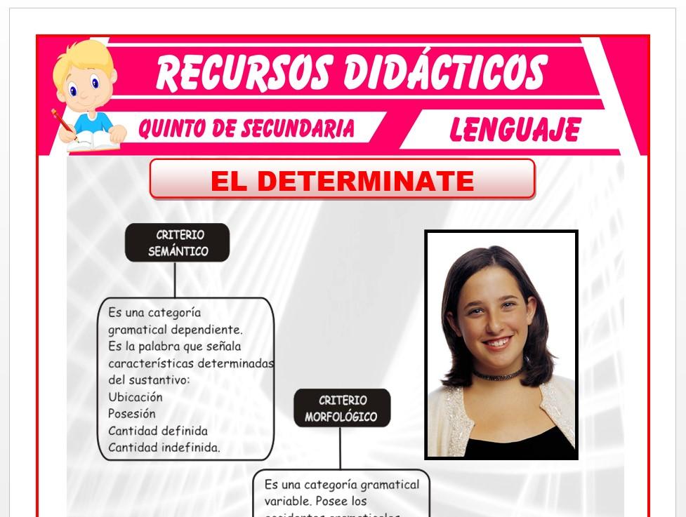 Ficha de Criterios del Determinante para Quinto de Secundaria