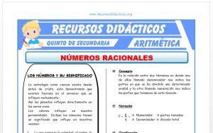 Ficha de Ejercicios de Números Racionales para Quinto de Secundaria