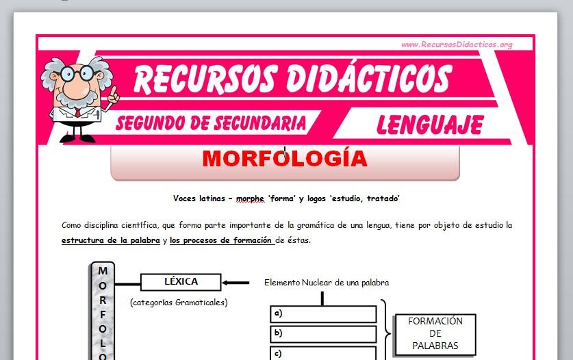 Ficha de La Morfología para Segundo de Secundaria