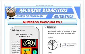 Ficha de Los Números Racionales 1 para Cuarto de Secundaria