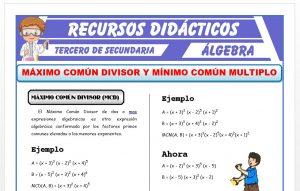 Ficha de Máximo Común Divisor y Mínimo Común Múltiplo para Tercero de Secundaria