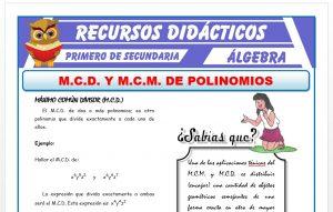 Ficha de MCD y MCM de Polinomios para Primero de Secundaria