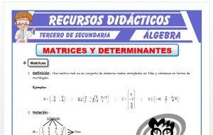 Ficha de Matrices y Determinantes para Tercero de Secundaria