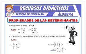 Ficha de Propiedades de las Determinantes para Tercero de Secundaria