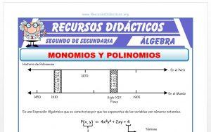 Ficha de Que son los Monomios y Polinomios para Segundo de Secundaria
