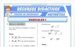 Ficha de Radicales Homogeneos y Semejantes para Tercero de Secundaria