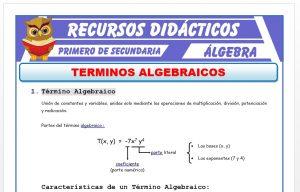 Ficha de Término Algebraico para Primero de Secundaria