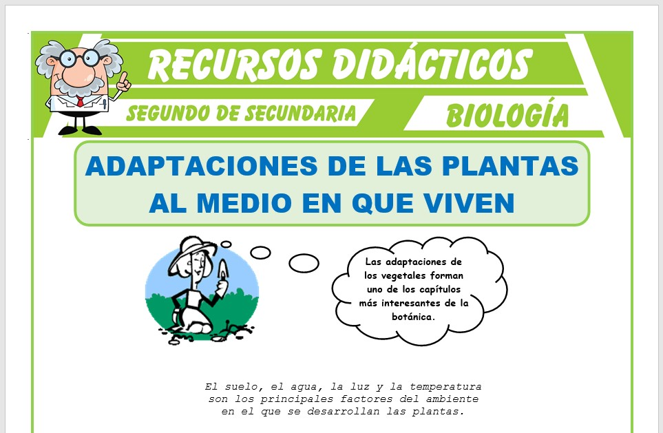 Ficha de Adaptaciones de las Plantas para Segundo de Secundaria