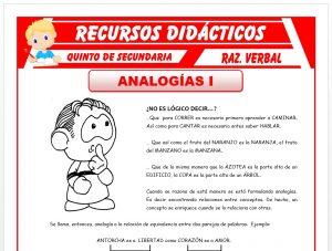Ficha de Analogías Verticales y Horizontales para Quinto de Secundaria