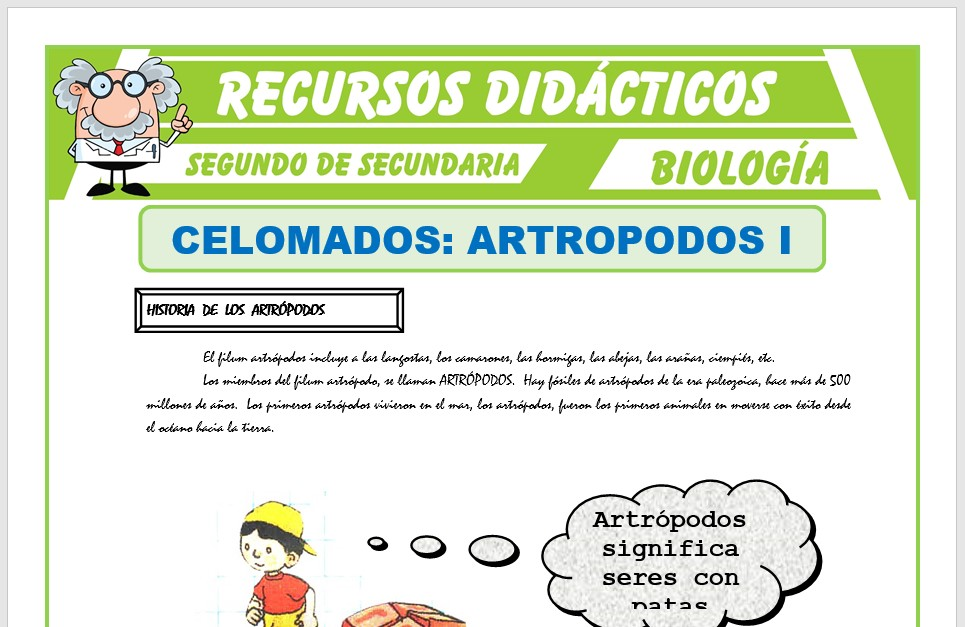 Ficha de Celomados Artrópodos para Segundo de Secundaria