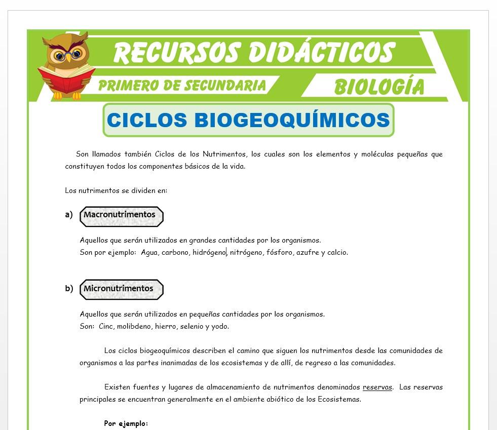 Ficha de Ciclos Biogeoquímicos para Primero de Secundaria