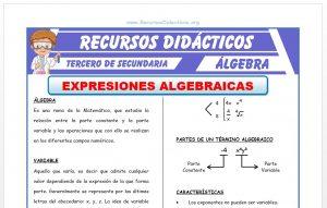 Ficha de Clasificación de las Expresiones Algebraicas para Tercero de Secundaria