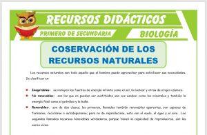 Ficha de Conservación de los Recursos Naturales para Primero de Secundaria