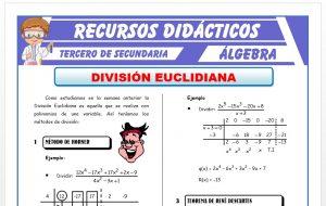 Ficha de División Euclidiana para Tercero de Secundaria