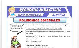Ficha de Ejercicios de Polinomios Especiales para Quinto de Secundaria