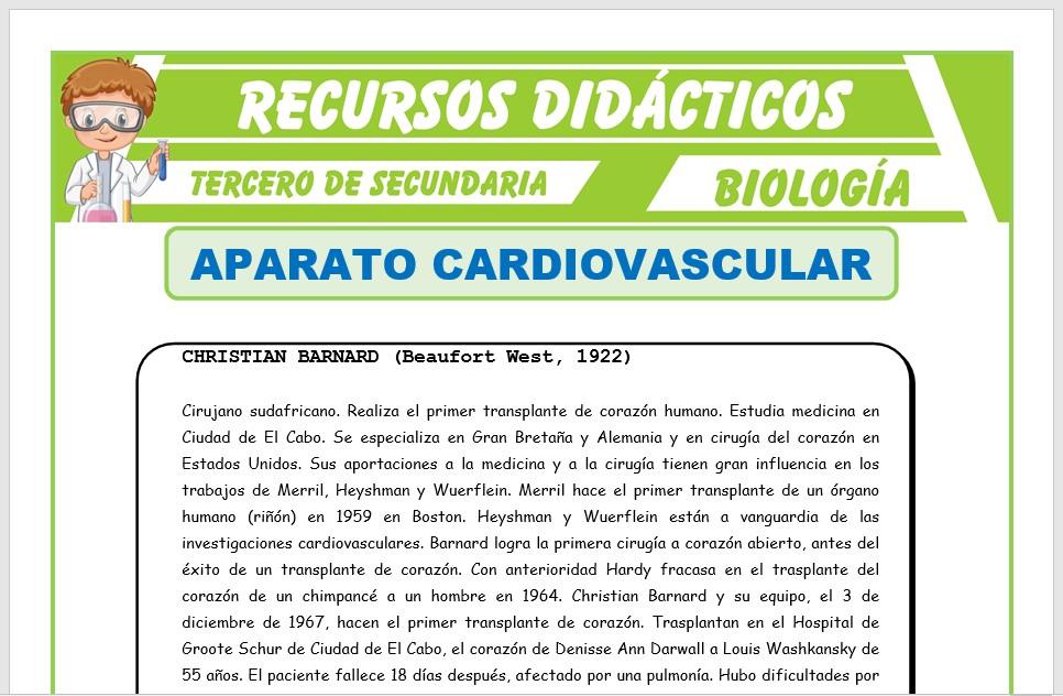 Ficha de El Aparato Cardiovascular para Tercero de Secundaria