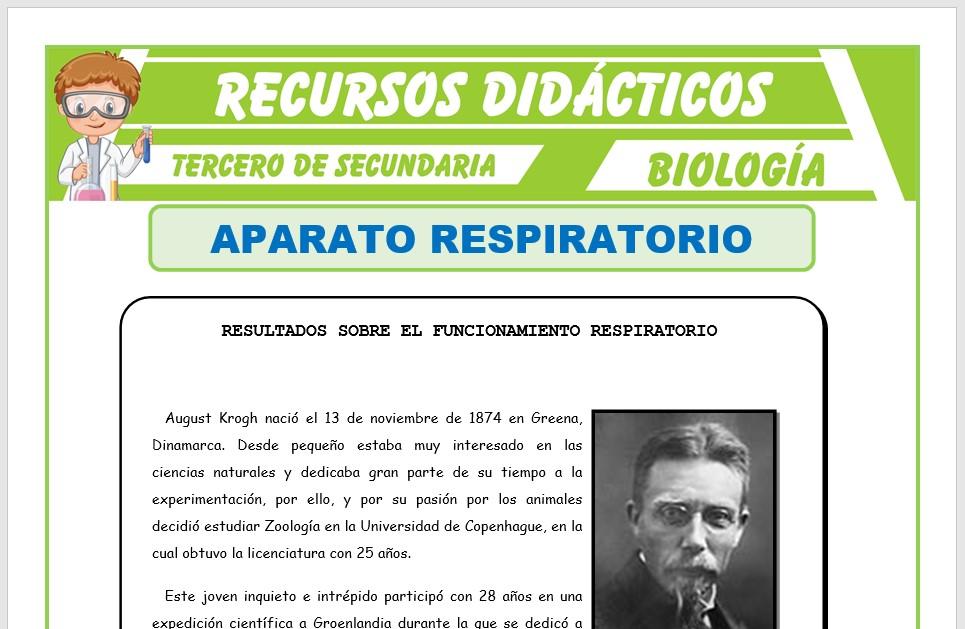 Ficha de El Aparato Respiratorio para Tercero de Secundaria