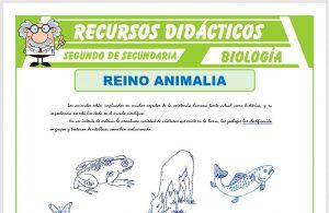 Ficha de El Reino Animalia para Segundo de Secundaria