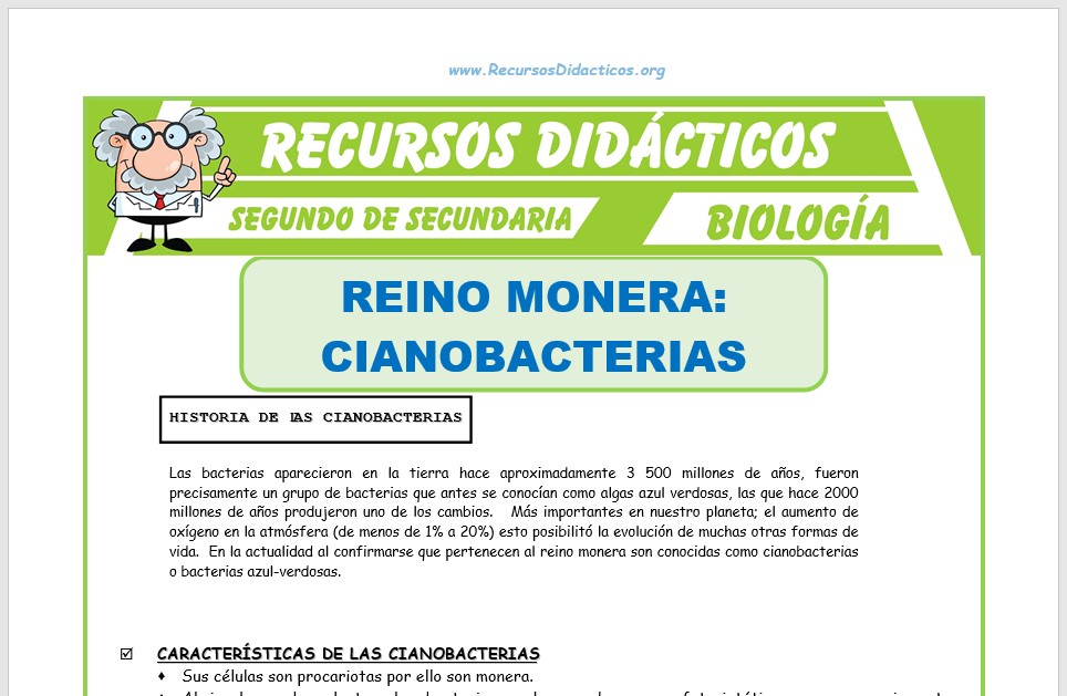 Ficha de El Reino Monera Cianobacterias para Segundo de Secundaria