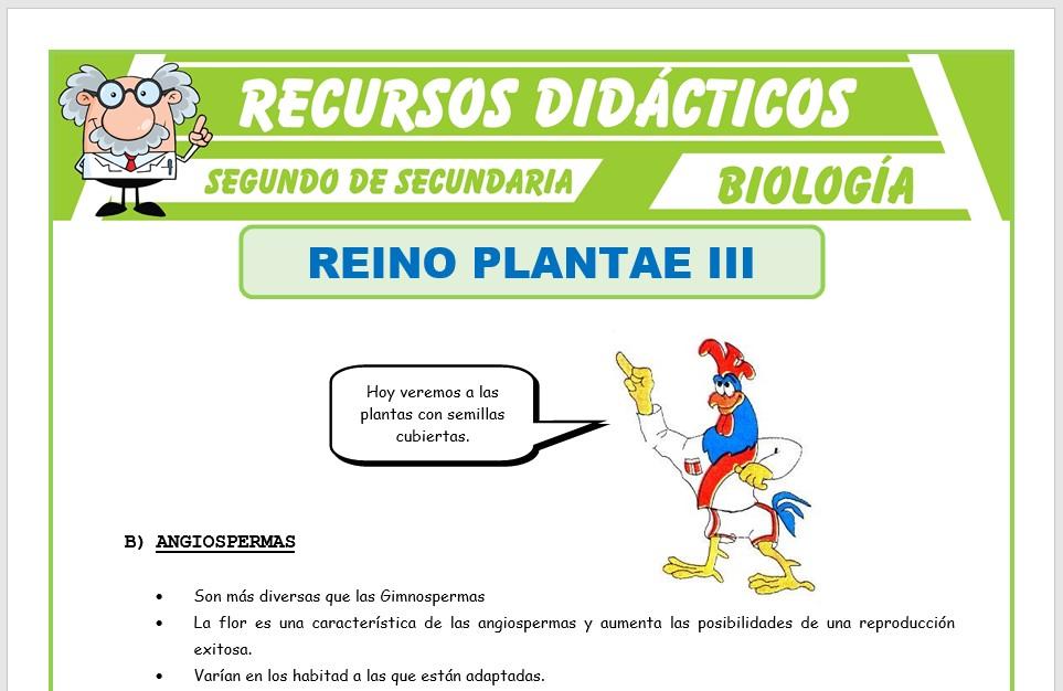 Ficha de El Reino Plantae Angiospermas para Segundo de Secundaria
