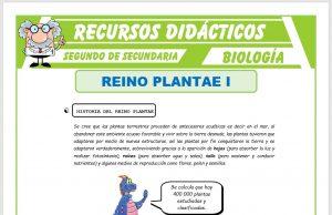 Ficha de El Reino Plantae Características para Segundo de Secundaria