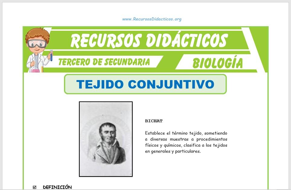 Ficha de El Tejido Conjuntivo para Tercero de Secundaria
