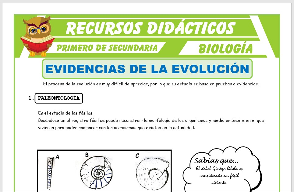 Ficha de Evidencias de la Evolución para Primero de Secundaria