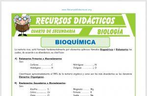 Ficha de La Bioquímica para Cuarto de Secundaria