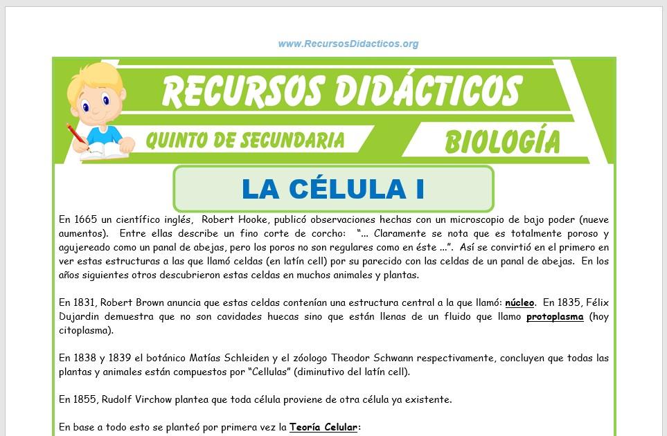 Ficha de La Célula para Quinto de Secundaria