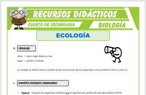 Ficha de La Ecología para Cuarto de Secundaria