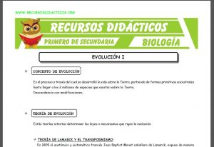 Ficha de La Evolución para Primero de Secundaria