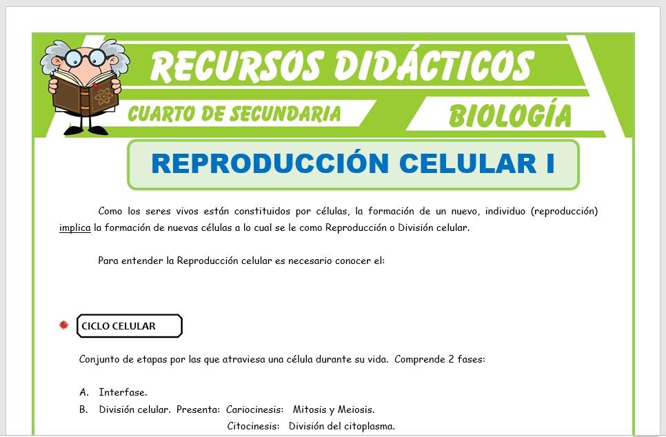 Ficha de La Reproducción Celular para Cuarto de Secundaria