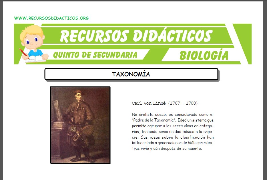 Ficha de La Taxonomia para Quinto de Secundaria