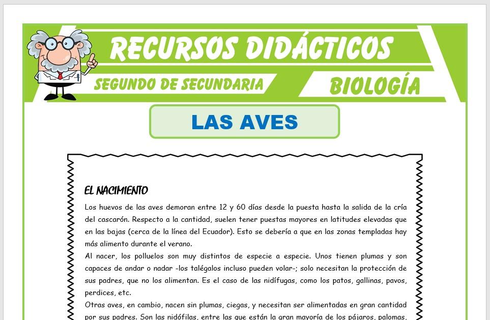 Ficha de Las Aves para Segundo de Secundaria