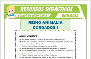 Ficha de Los Anfibios y los Reptiles para Quinto de Secundaria