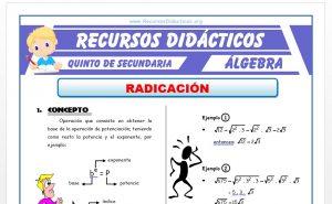 Ficha de Problemas de Radicación para Quinto de Secundaria