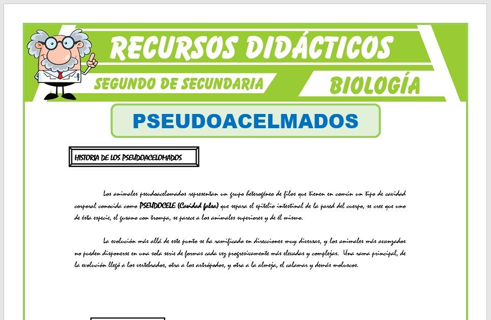 Ficha de Pseudoacelomados para Segundo de Secundaria
