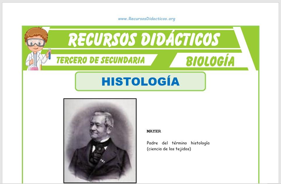 Ficha de Que Estudia la Histología para Tercero de Secundaria