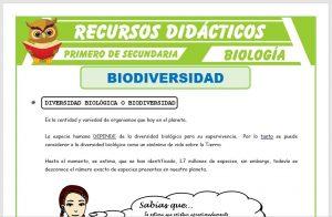 Ficha de Que es la Biodiversidad para Primero de Secundaria