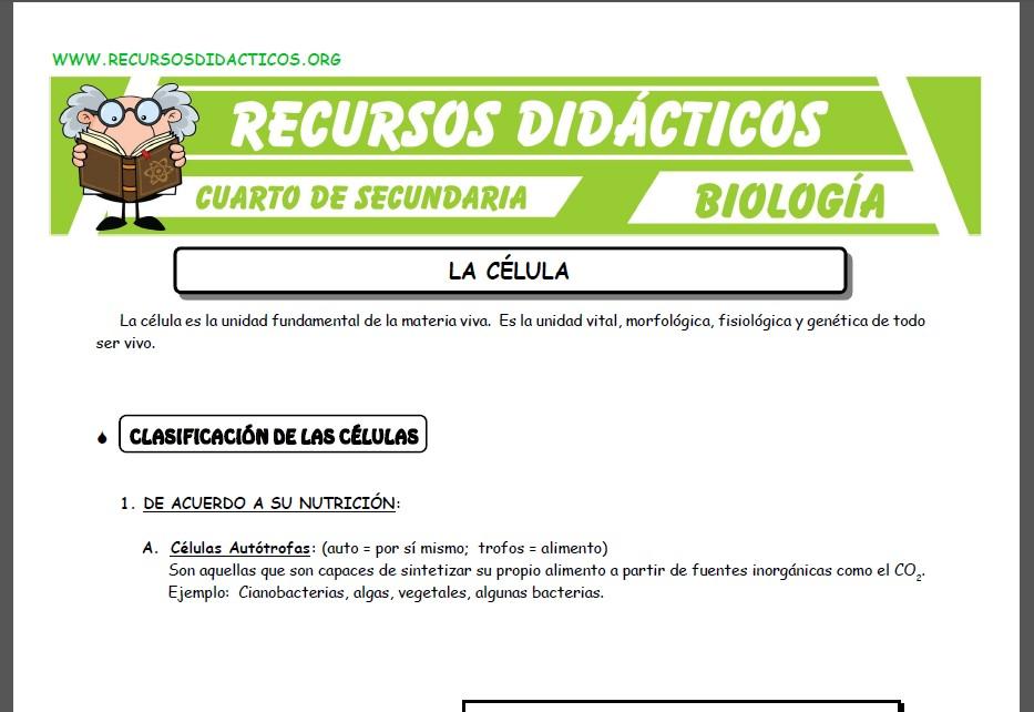 Ficha de Que es la Célula para Cuarto de Secundaria
