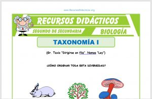 Ficha de Que estudia la Taxonomía para Segundo de Secundaria