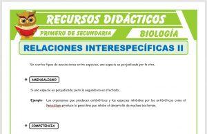 Ficha de Relaciones Interespecíficas 2 para Primero de Secundaria